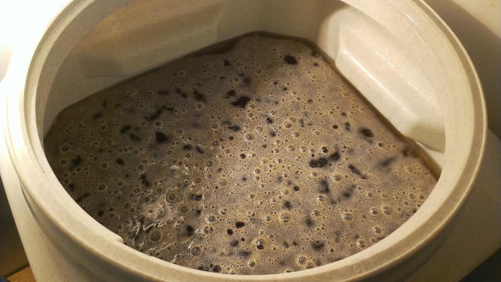 dai-momo-berliner-weisse-fermenting-1024x768