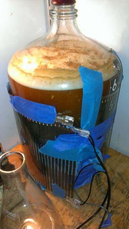 eds-special-bretter-fermenting-1024x768
